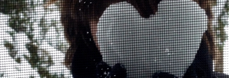 heart shape snow ice through window screen2
